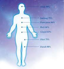 tubuh sehat